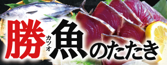 春メニュー・勝魚のたたき